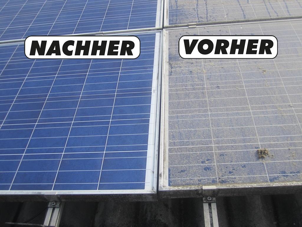 photovoltaik reinigung wir reinigen ihrer photovoltaik anlagen kologische qualit tsreinigung. Black Bedroom Furniture Sets. Home Design Ideas